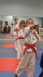 Orange Belts performing combinations during belt test.