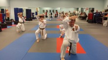 2014 May Belt Test 185