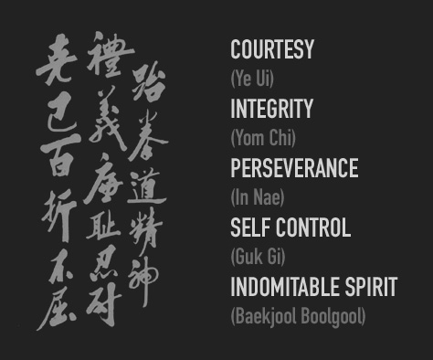 fivetenetsoftaekwondo