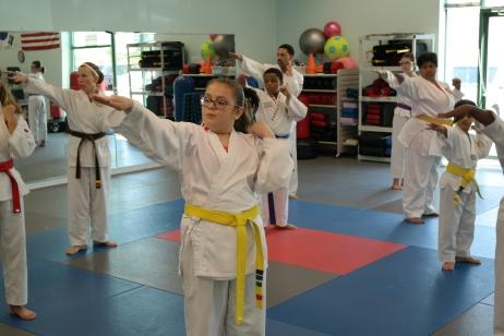 Integrity Martial Arts 2017