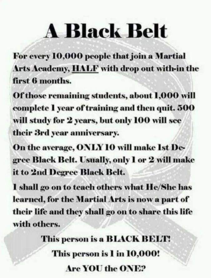 Black belt wisdom