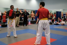 Integrity Martial Arts 2017 Sparring Tournament